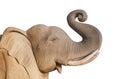 Elephant statue, Isolated on white background Royalty Free Stock Photo
