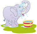 Elephant taking a bath Royalty Free Stock Image