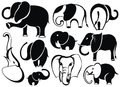 Elephants collection vector illustration of elephant silhouettes on white background Royalty Free Stock Images