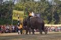 Elephants and players, during polo game, Thakurdwara, Bardia, Nepal