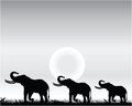 Elephants silhouettes of at sunset illustration Royalty Free Stock Photography