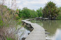 Elevated footpath en afek an wooden over a water pond in nature reserve northern israel Stock Photography
