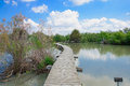 Elevated footpath en afek an wooden over a water pond in nature reserve northern israel Royalty Free Stock Photos