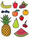 Eleven Common Fruits Stock Image