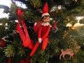 Elf on the Shelf Royalty Free Stock Photo