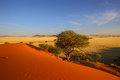 Elim dunes in namib naukluft np namibia Stock Photo