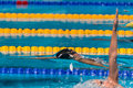 Elizabeth pelton gbr barcelona – august in barcelona fina world swimming championships on august in barcelona spain Stock Photos