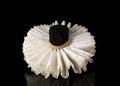 Elizabethan Lace Ruff Collar