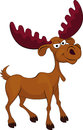 Elk cartoon Royalty Free Stock Photo