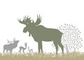Elk and deer by tree Royalty Free Stock Photo