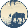 Elk in the drinking water vector illustration morning landscape drinks careful work with details Stock Photography