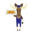 Elk with a pizza illustration of an on white background Royalty Free Stock Photos