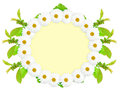 Ellipse frame with white flowers Stock Image