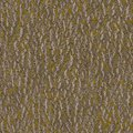 Elm bark seamless texture of tileable Stock Photos