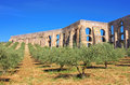 Elvas Aqueduct Royalty Free Stock Photo