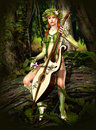 Elven Forest Stock Image