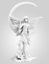 Elves misty angel on white Royalty Free Stock Photo