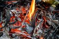 Embers And Glowing embers. Glowing coal in the Ash Royalty Free Stock Photo