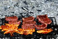 Embers grilled meat meats on the grid finished the Stock Photography