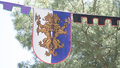 emblem, medieval coats of arms in a traditional ancient art fair Royalty Free Stock Photo