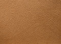 Embossed leather brown close up Stock Photo