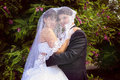 Embracing under bride s veil background Royalty Free Stock Photo