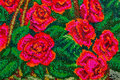 Embroidered red roses Royalty Free Stock Photo