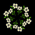 Embroidered white flowers on black background
