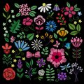 Embroidery elements. Flowers, leaves, dragonflies, butterflies embroidered on black background. Floral motifs for