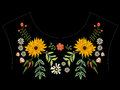 Embroidery native neckline pattern with asters and chamomiles. Royalty Free Stock Photo