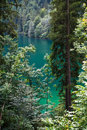 Emerald green Konigssee Stock Photos