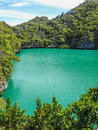 Emerald lagoon at mae koh koh ang thong marine park Stock Images