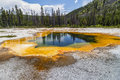 Emerald Pool Of Hot Water At Y...