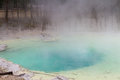 Emerald spring at Norris Geyser Basin Royalty Free Stock Photo
