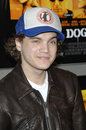 Emile Hirsch Royalty Free Stock Images
