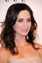 Emily Blunt Royalty Free Stock Photography