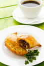 Empanada stuffed with bread on a white plate Royalty Free Stock Photography