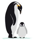 Emperor penguin family Stock Photography