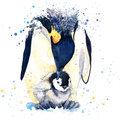 Emperor penguin T-shirt graphics. emperor penguin illustration with splash watercolor textured background. unusual illustration wa Royalty Free Stock Photo
