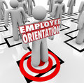 Employee orientation words new worker organization chart on a standing on an being introduced to the team or workforce Royalty Free Stock Photos