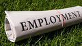 Employment newspaper on green meadow Stock Photography
