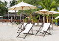 Empty beach beds sun and umbrellas on the on a background of the jungle Stock Photography