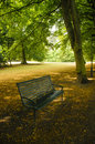 Empty bench in a park Royalty Free Stock Photos