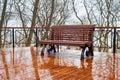 Empty bench rain park reflection Royalty Free Stock Photo