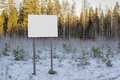 Empty billboard in winter forest russian Royalty Free Stock Photos