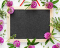 Empty blackboard, floral border from flowers and herbs. Royalty Free Stock Photo