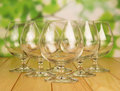 Empty brandy glasses the on natural background Stock Photos