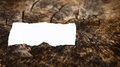 Empty cardboard on tree trunk torn white blank piece of paper ideal for writing messages Royalty Free Stock Photo