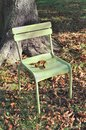 Empty chair an in front of a tree trunk among dead leaves Royalty Free Stock Photos