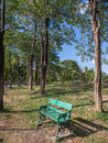 Empty chair in park Royalty Free Stock Photo
